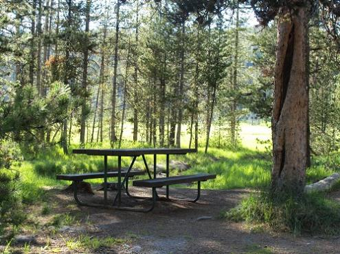 Beaver Lake Picnic Area - Yellowstone National Park