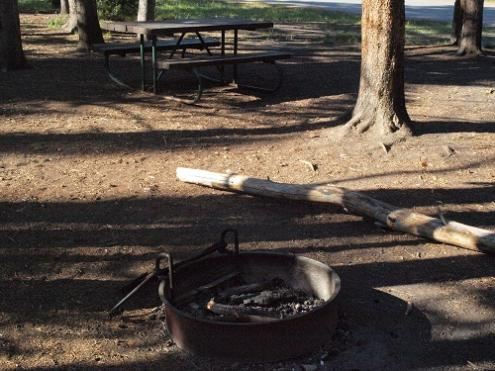 Table and fire pit at Norris Picnic Area