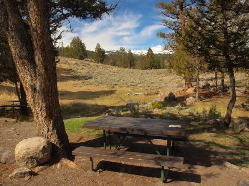 Yellowstone Picnic Area