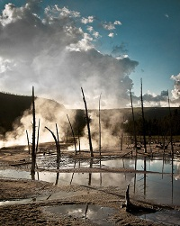 Thermal Area - Yellowstone National Park