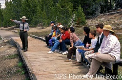 Ranger led activities - Yellowstone National Park